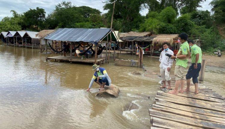 马德望城佳河水质被污染 (1)