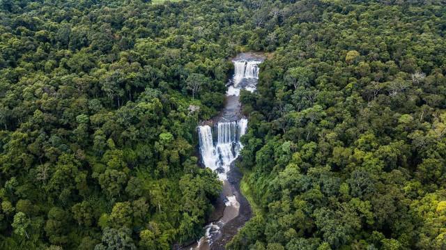 柬埔寨森林覆盖面积